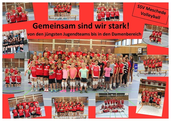 Volleyball 1. Platz 2019